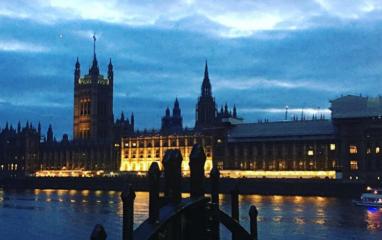 Westminster @woolfalex
