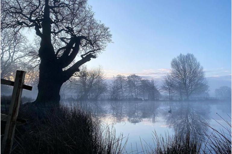 Pondscape 🌳 @itsjamesherring on Instagram