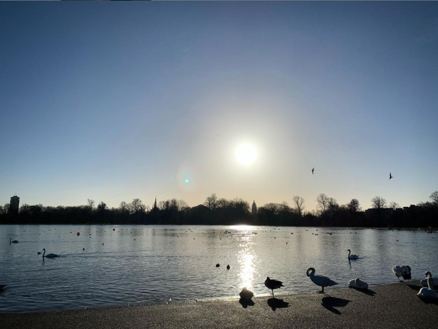First London run of the year. Up early to beat the crowds and enjoy the beautiful winter sun in Hyde Park☀️ @lornagott on Instagram
