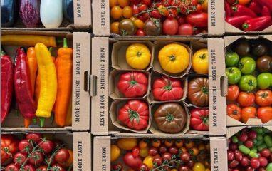 British Tomato Fortnight @pamlloydpr