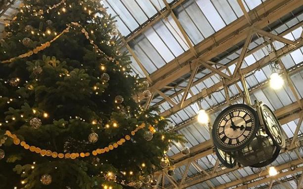 Christmas tree @r_henders on Instagram