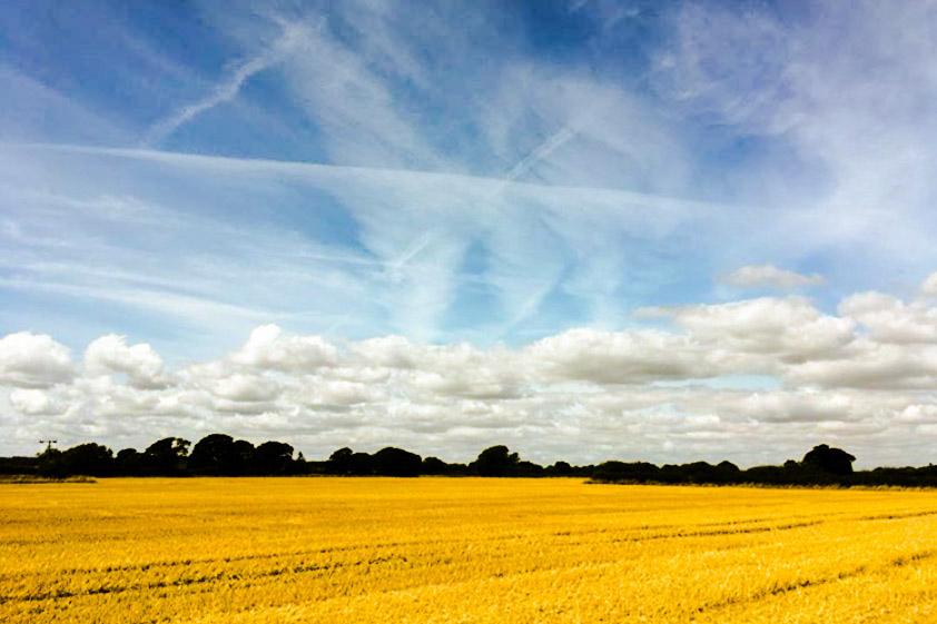 Big summer sky (Tom Watson @watson950)